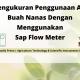 Pengukuran Penggunaan Air Buah Nanas Dengan Menggunakan Sap Flow Meter